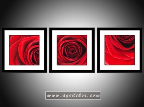 Jual Wall Art Red Rose Canvas Frame